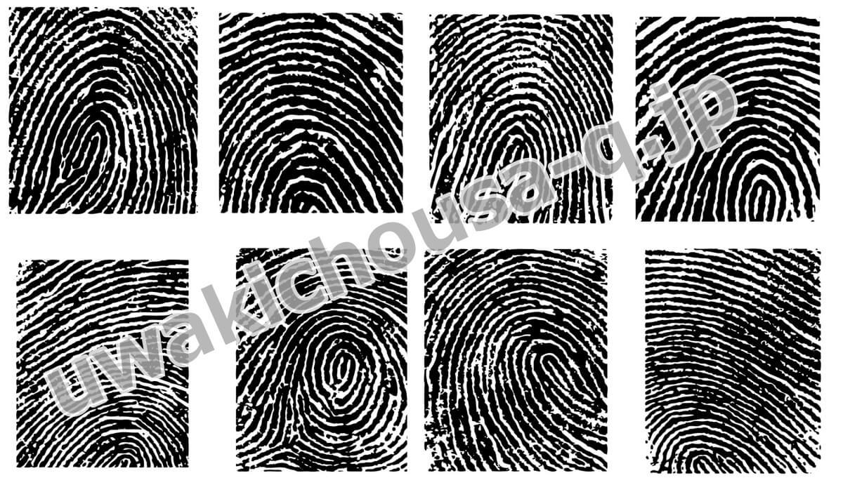 マスター指紋イメージ